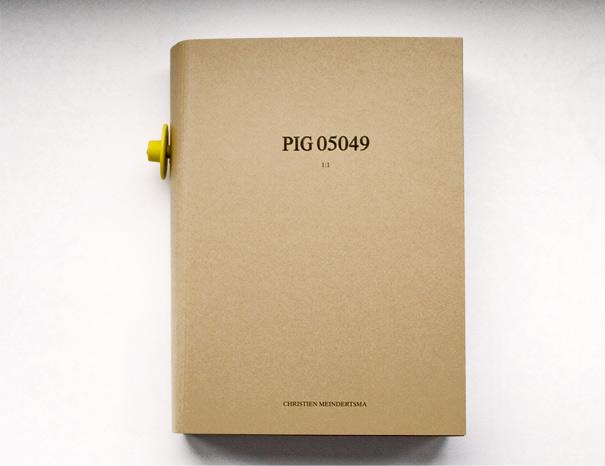 Pig 05049
